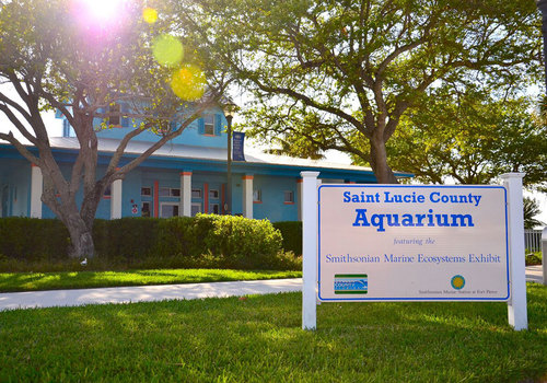 Saint Lucie County Aquarium at the Smithsonian Marine Ecosystems Exhibit