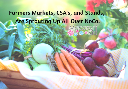 Farmers Markets, CSA's & Stands