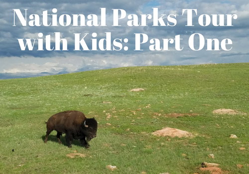 Epic National Parks Tour and Road Trip with Kids:  Part One