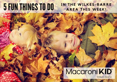 5 Fun Things to Do