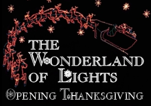 The Wonderland of Lights