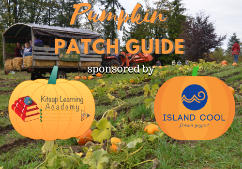 Shawn's pumpkin patch | attractions in lax/westchester, los angeles.