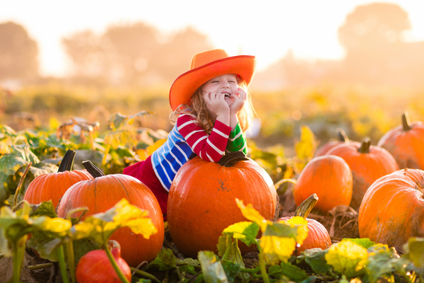 Fall fun guide 2018: central indiana festivals, pumpkin patches.