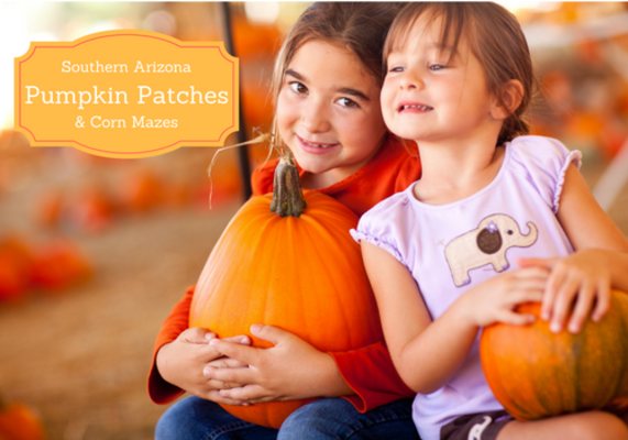 Pumpkin patches in hutchinson yelp.