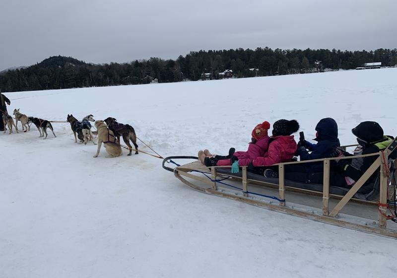 Dog sledding at Lake Placid