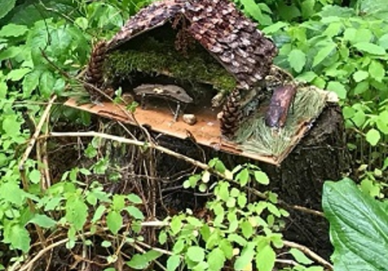 Fairy houe made from wood bark pinecones and moss, placed on a tree stump, surrounded by wild foliage