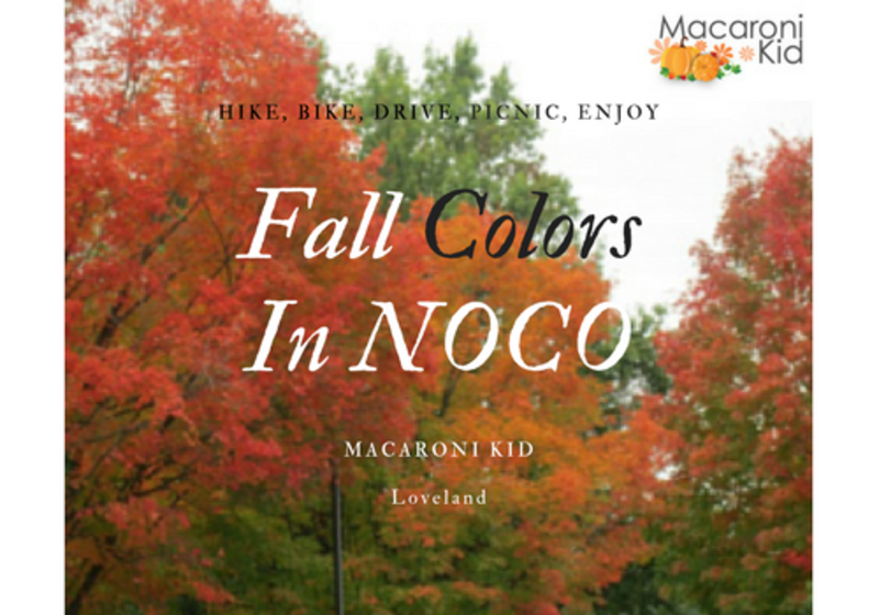 Fall Colors in Loveland & NOCO