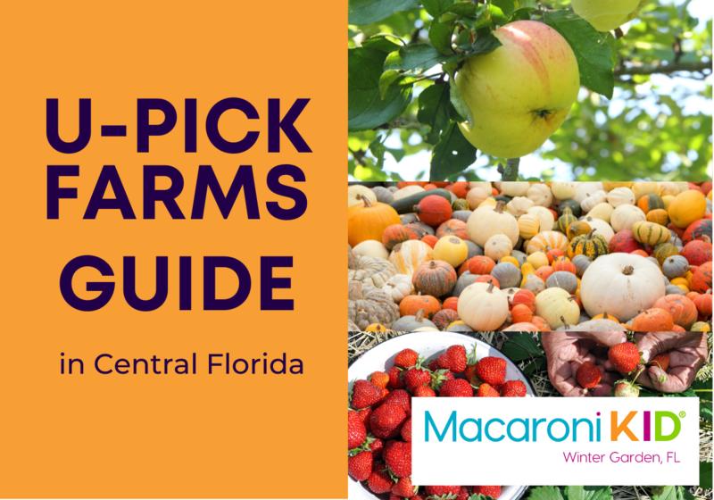 U-Pick Farms in Florida