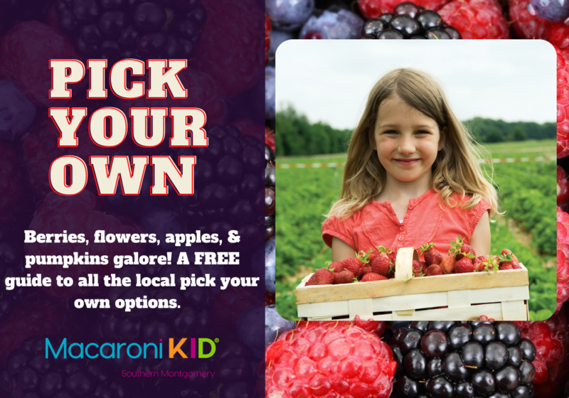 u pick pick your own berries farms produce