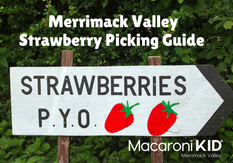 Strawberries PYO sign