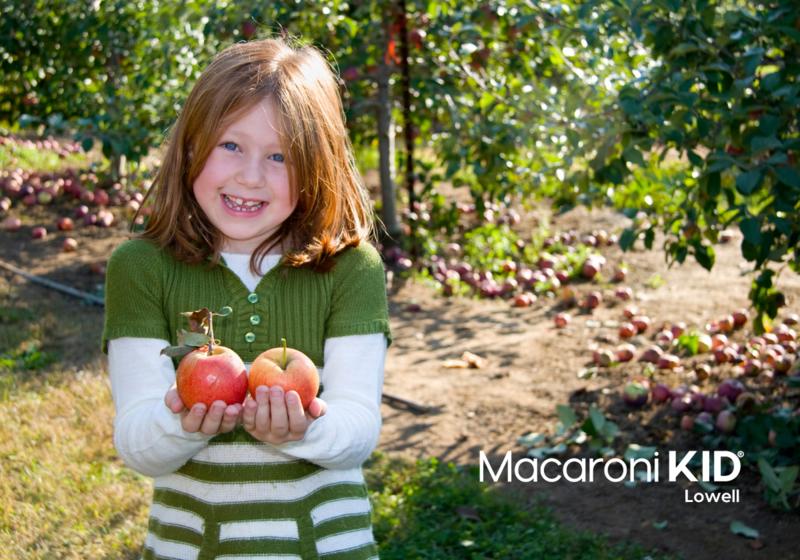 Girl picking apples