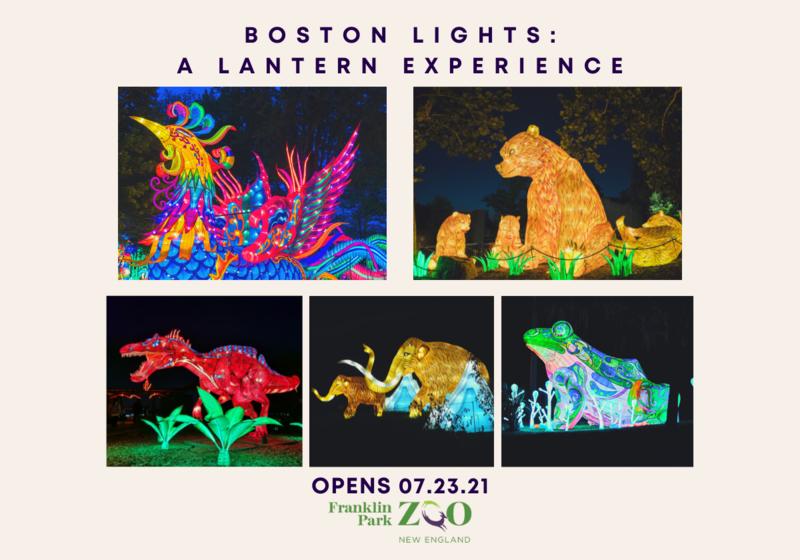 Boston Lights 2021 pictures of lantern animals
