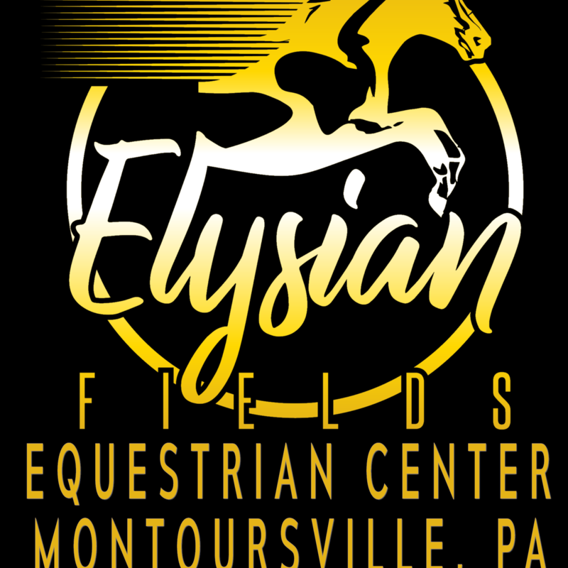 Youth Programs, Riding Lessons, Stable, Horse Housing