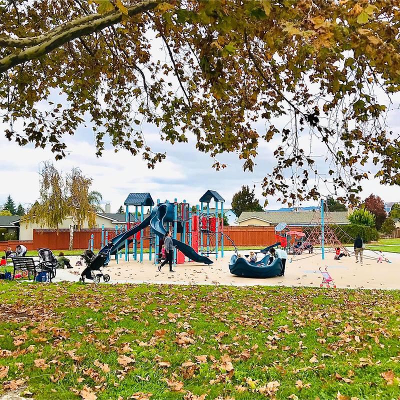Newton Neighborhood Park in Fremont