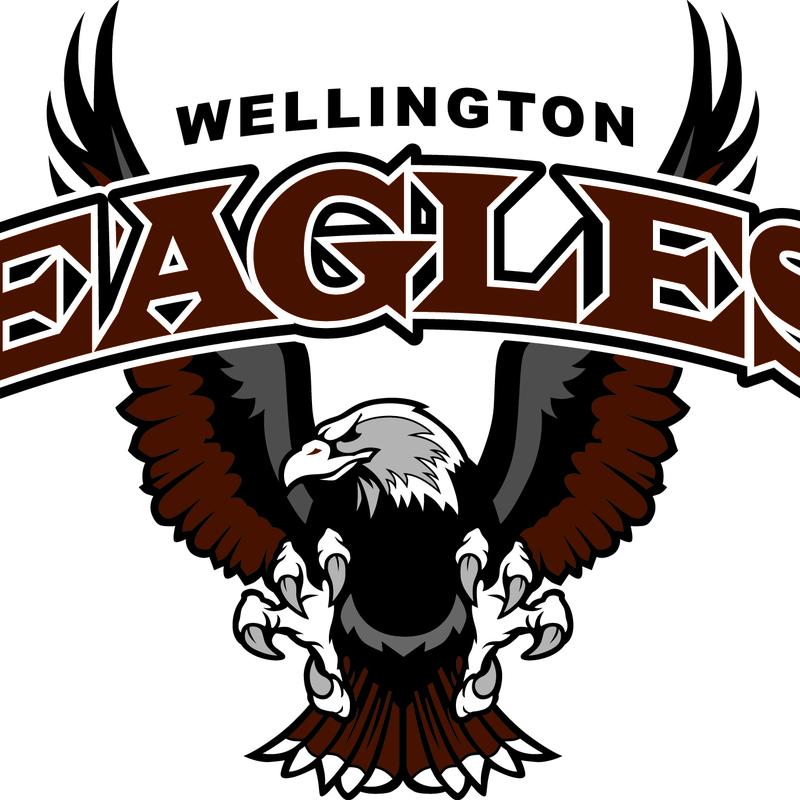 Wellington Eagles