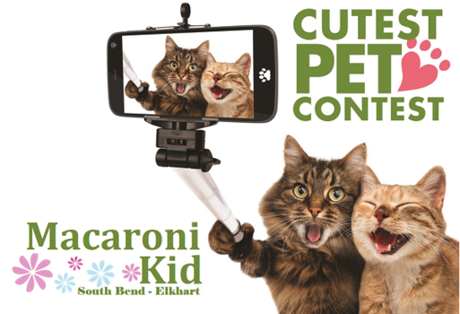 Cutest Pet Photo Contest   Enter Now!