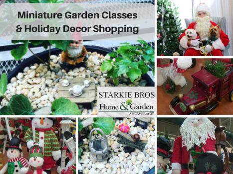 Holiday Garden.png. Visit Starkie Brothers Garden Center
