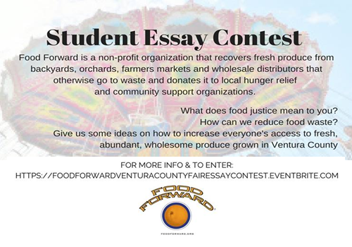Food Forward Ventura County Fair Essay Contest For Students In K  Food Forward Is A Nonprofit Organization That Recovers Fresh Produce From  Backyards Orchards Farmers Markets And Wholesale Distributors That  Otherwise Go