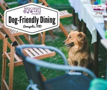 14 Dog Friendly Restaurants In Annapolis Macaroni Kid