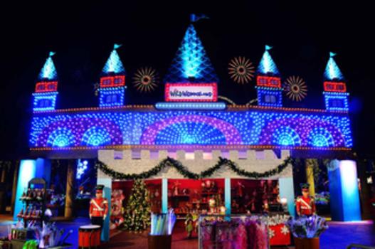 Lowry Park Zoo Christmas.Win 4 Tix Wild Wonderland At Lowry Park Zoo