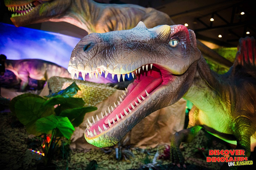 Dinosaur Time Trek Shark Edition