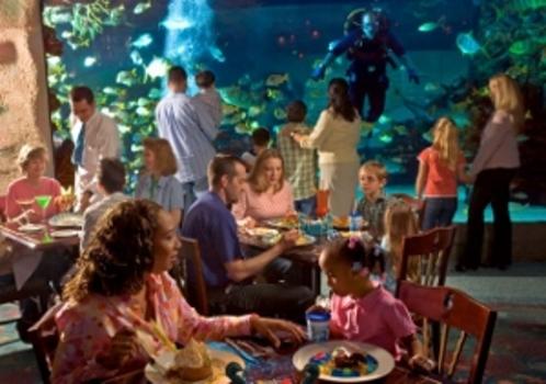 Our Favorite Houston Themed Restaurants