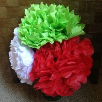Macaroni Craft Mexican Tissue Paper Flowers