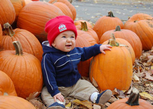 Image result for pumpkin patch children playing