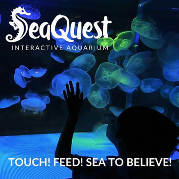 This Weekend We Took The Kids To Check Out The Seaquest Interactive Aquarium At The Boulevard Mall I Couldnt Wrap My Mind Around A Full Size Aquarium