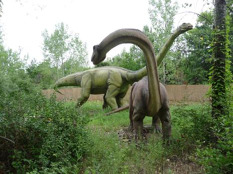 Road Trip: Field Station: Dinosaurs