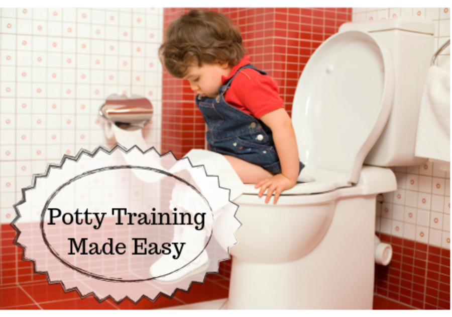 Potty Training Made Easy Guide to Potty Training