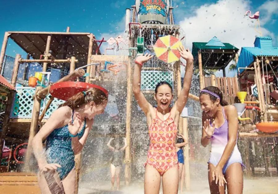 38% off SeaWorld, Aquatica Orlando, Busch Gardens, or Adventure Island