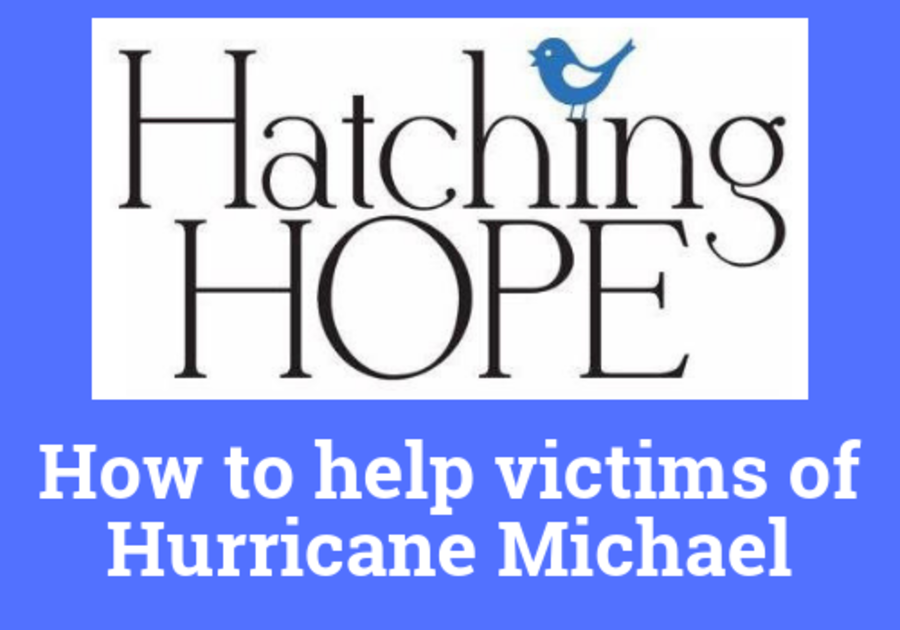Ways to help victims of hurricane Michael, Florida panhandle, Panama City, donations, disaster relief