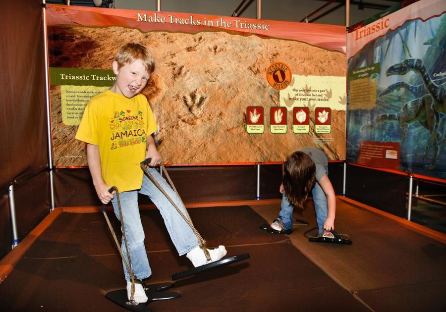 South Florida Science Center and Aquarium Dinosaur Revolution Exhibit