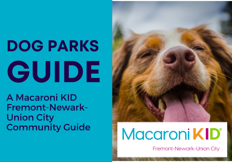 Dog Parks in Fremont, Newark, and Union City