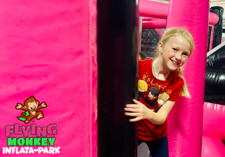 Flying Monkey Inflata-Park Erie Pa