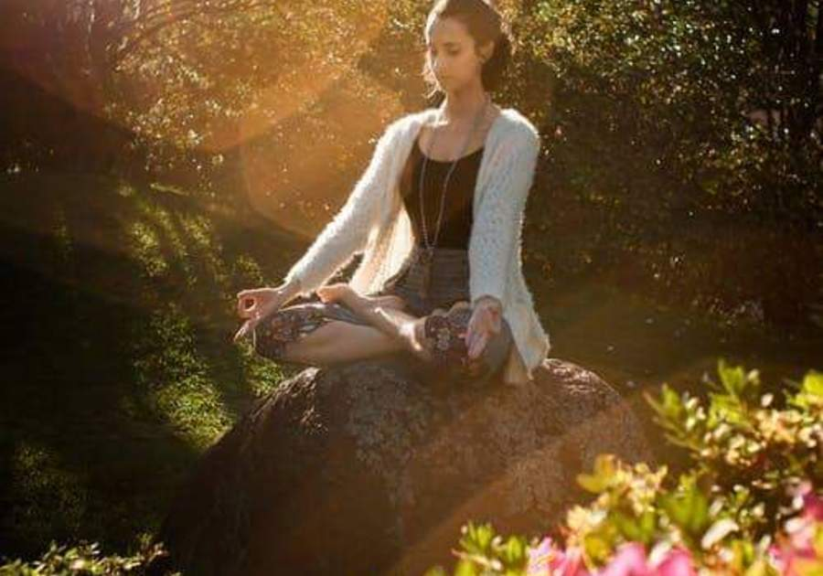 Family Balance Yoga forest