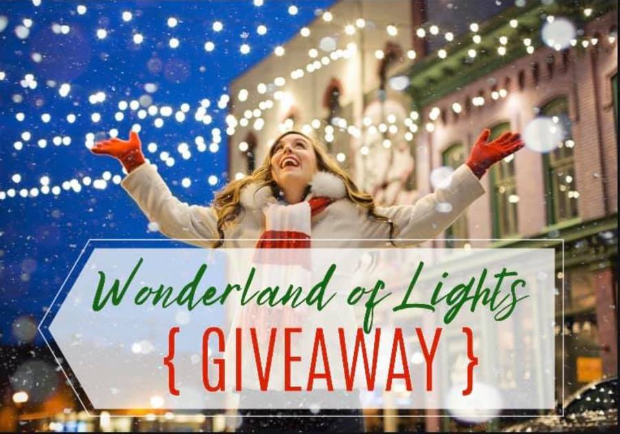 Wonderland of Lights GIVEAWAY | Macaroni Kid Apollo Beach   Ruskin