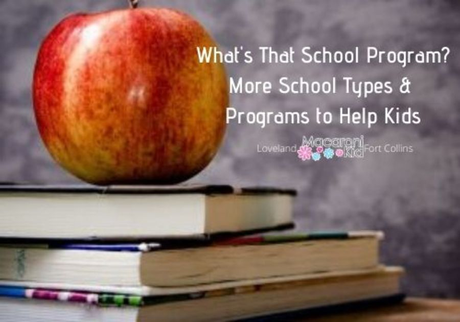 What's That School Program?