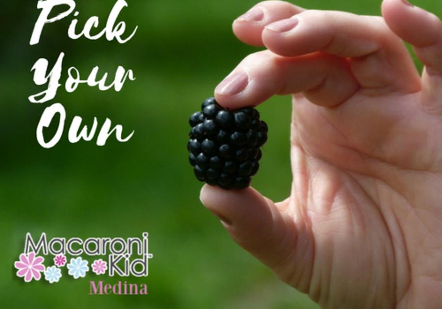 pick your own berries apples medina county northeast ohio