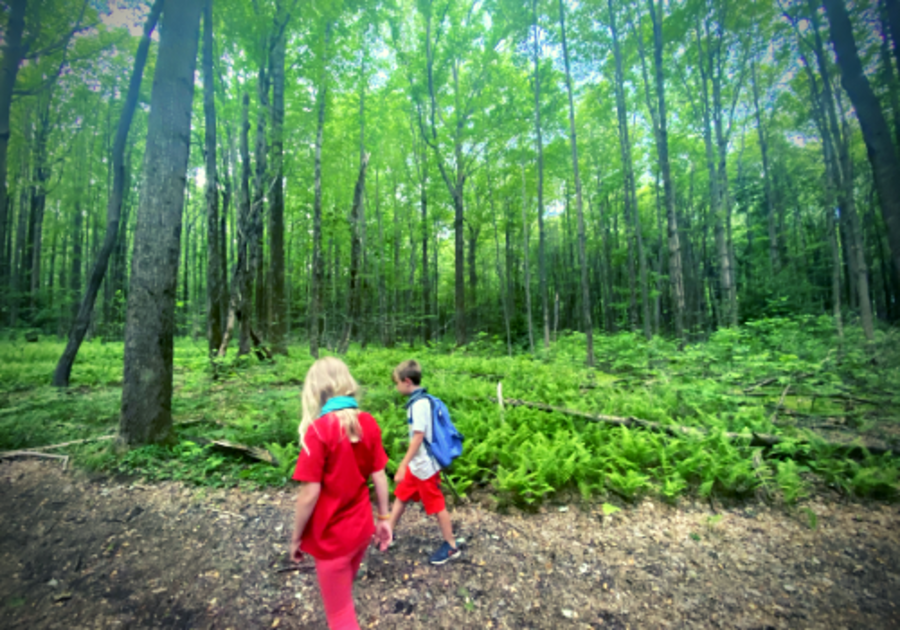 Best places to hike erie pa