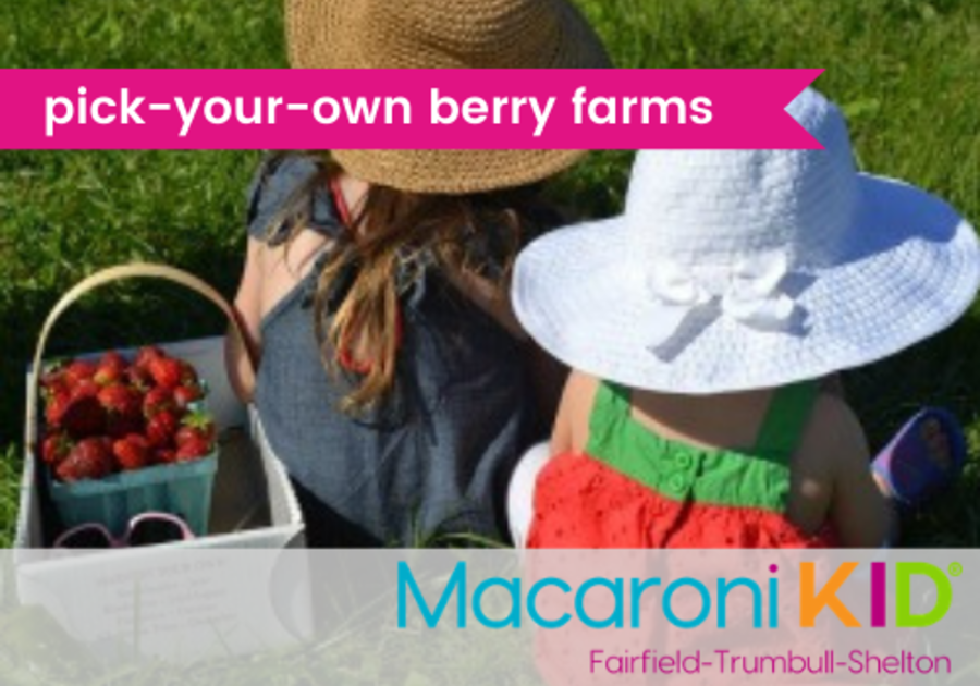 pick-your-own berry farms