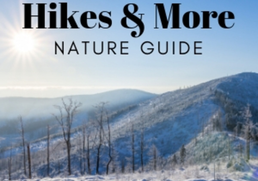 Hickory NC Hikes Winter