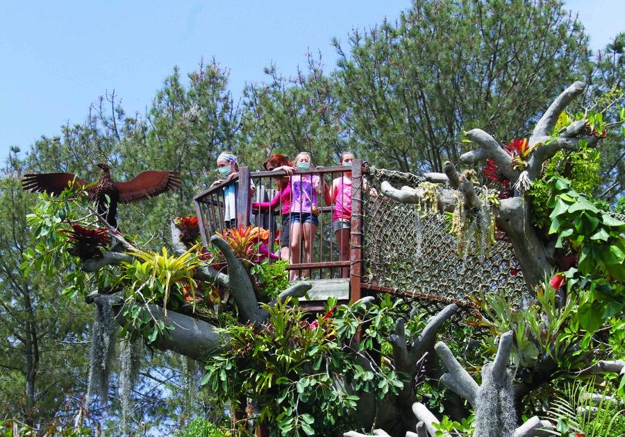 San Diego Botanic Garden - Rachel Cobb