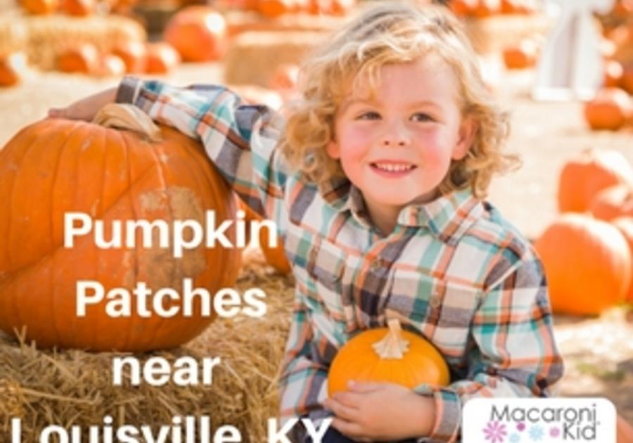 Pumpkin Patches, Louisville KY