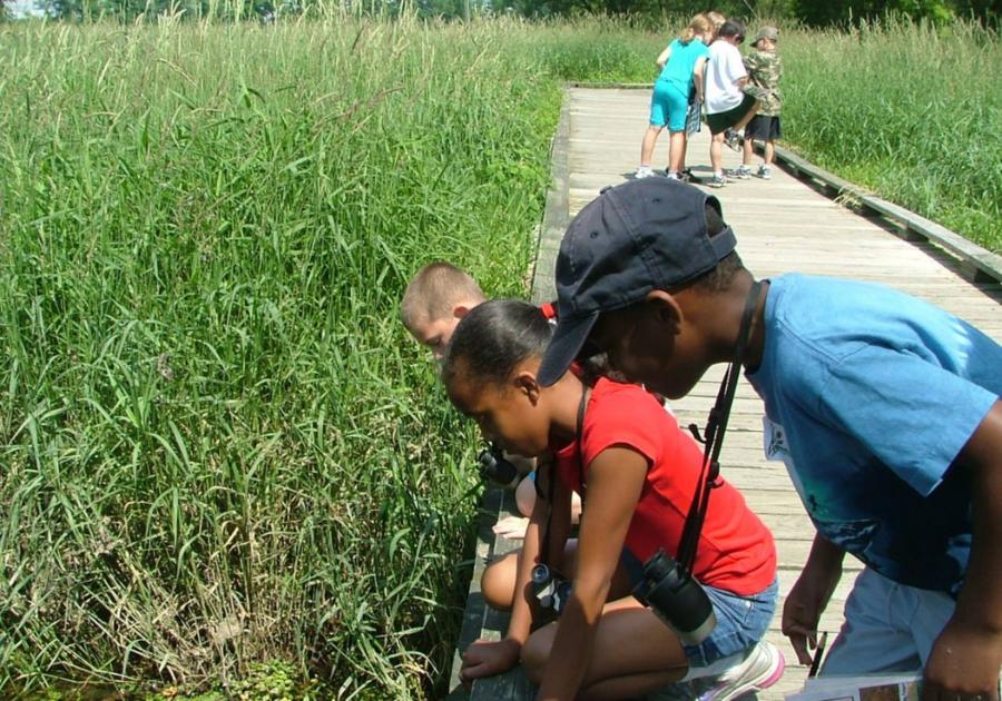Enjoy Wetlands Festival at Wildwood Lake