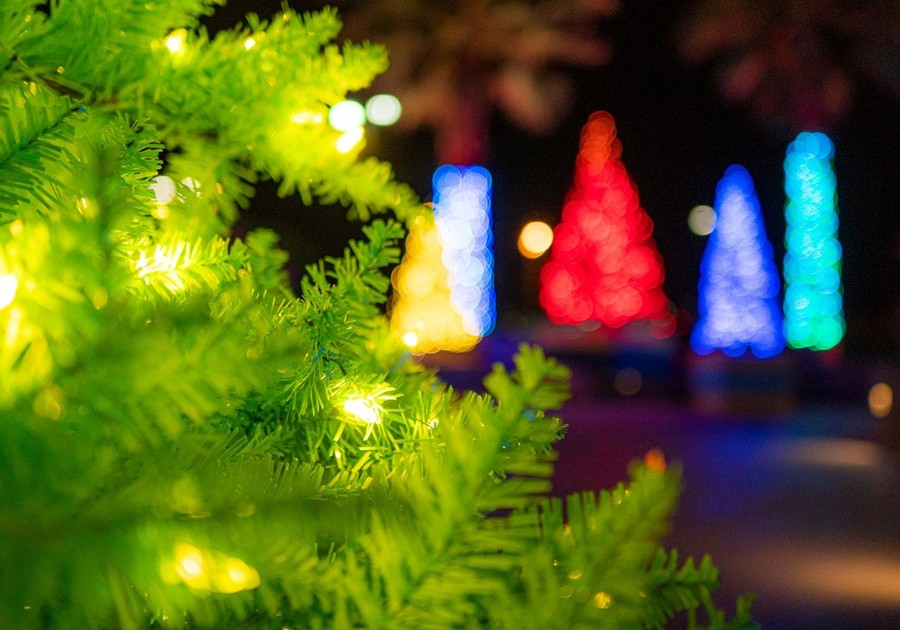Christmas Lights In Camarillo 2021 The 2020 Holiday Lights Guide For Ventura County And Beyond Macaroni Kid Camarillo Ventura Oxnard