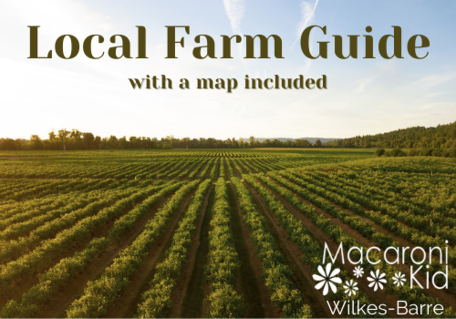 Farms in the Wilkes-Barre area
