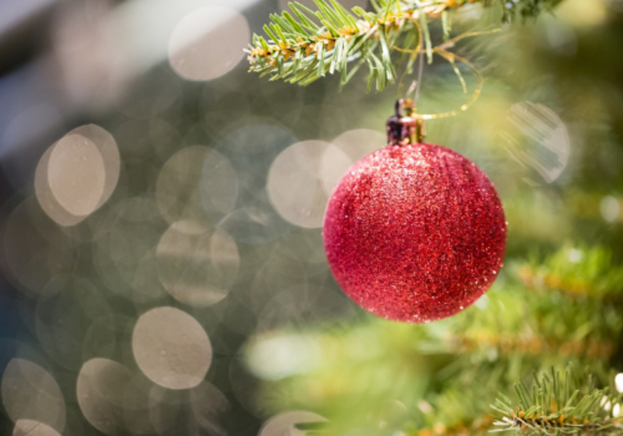 Red ornament on tree