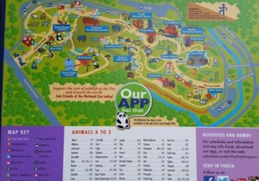 Visit Smithsonian Zoo In Washington D C With Your Family Macaroni Kid Harrisburg And West Shore